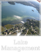 Lake Management Button