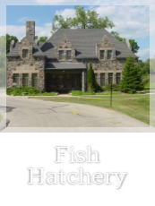 Fish Hatchery Button